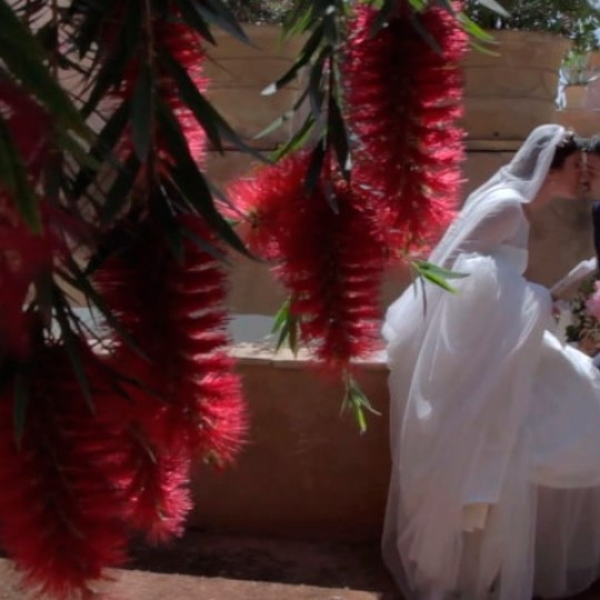 La boda de Isidro y Esperanza
